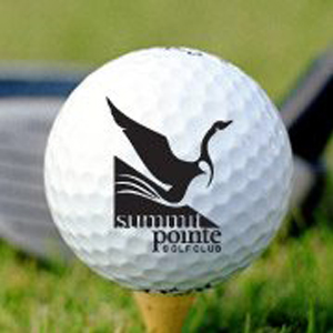 A premiere golf destination in the South Bay Area, Summitpointe Golf Club is an escape from the hustle of the Silicon Valley. The course is a few minutes drive into the foothills of Milpitas, you will experience an oasis of wildlife, fresh air, and a golf challenge for all levels to enjoy.
